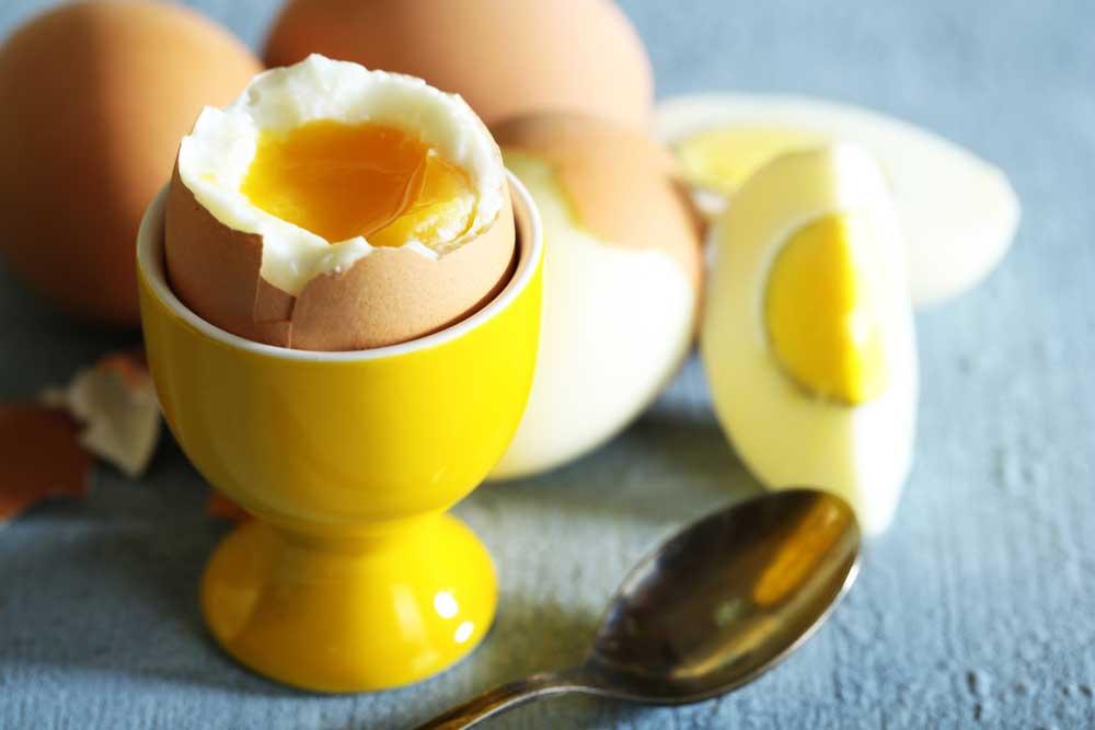 Boiled eggs in a egg holder