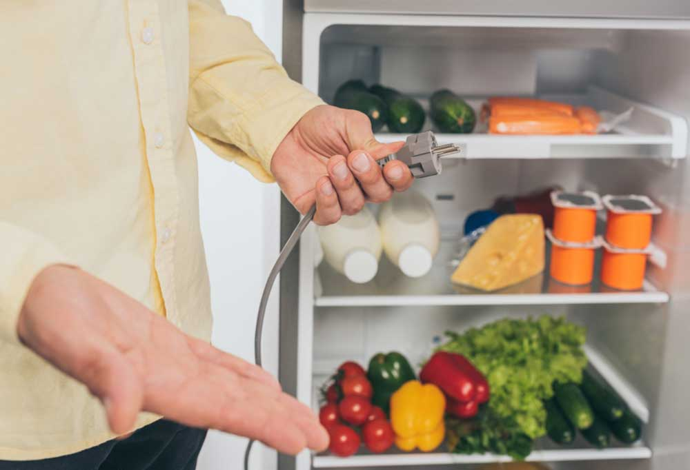 person holding plug in hand in fron of open fridge