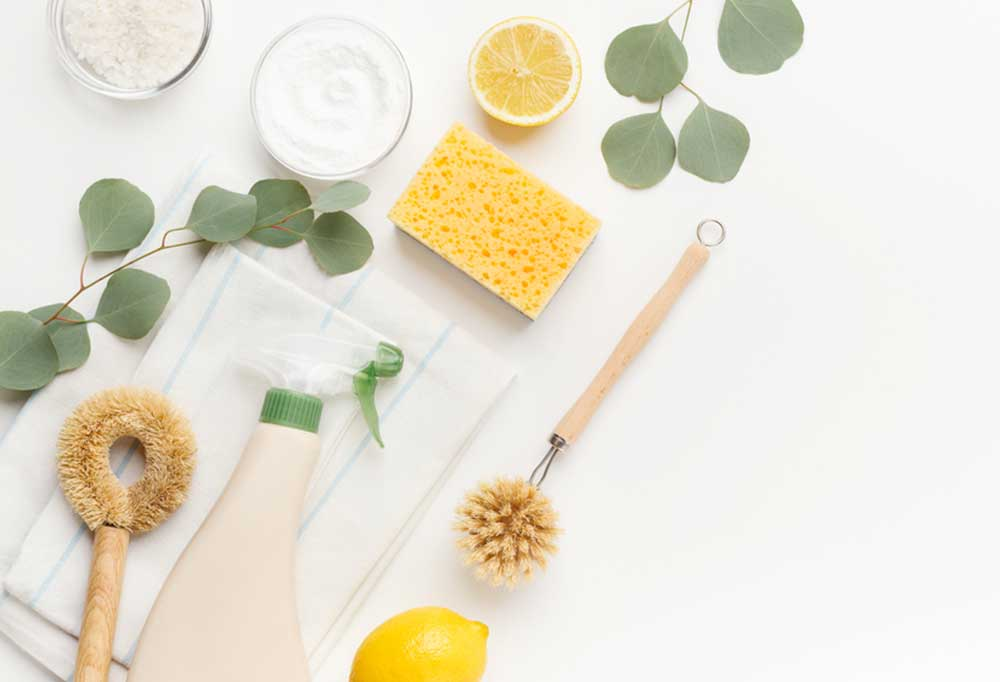 various cleaning tools, spray, lemon, baking soda, leaves, on a white background