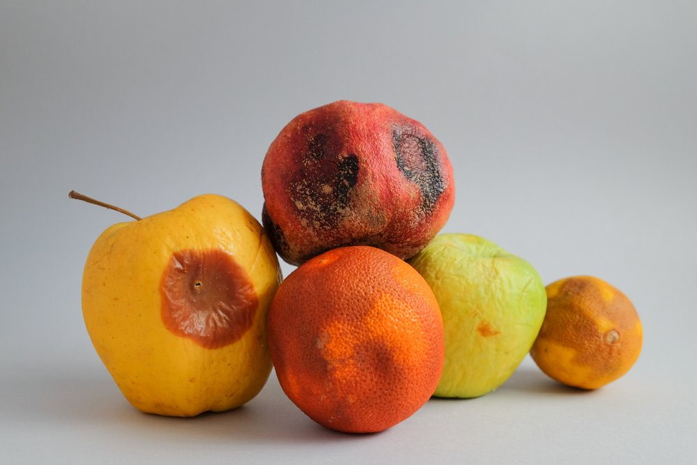 Rotting fruit isolated on a grey countertop